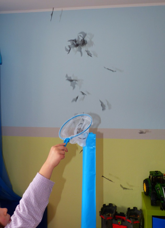 Fledermäuse fangen