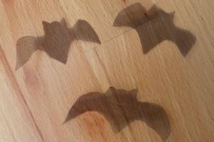 Zutat Fledermaus 3