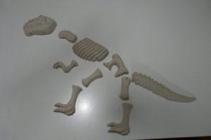 Dino-Skelett-Teile2