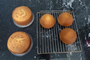 Eulen-Kuchen_1-