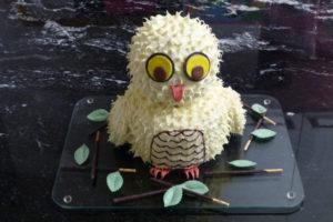 Eulen-Kuchen_Fertig1