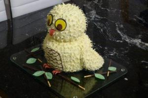 Eulen-Kuchen_Fertig2