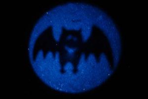 Fledermaus-Taschenlampe